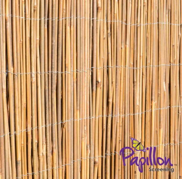 Cercado - Panel Enrollable Bambú Natural 3m x 1.5m - de Papillon™