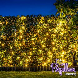 Cercado Extensible Artificial - Hoja de Laurel con Luces LED de 2.0m x 1.0m- De Papillon™